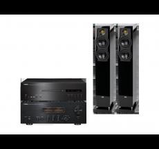 A-S1100 + CD-S1000 + FS247.3