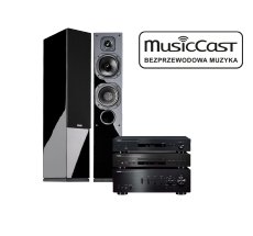 A-S701 + CD-S300 + NP-S303 + Indiana Line Diva 552