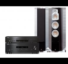 A-S201 + CD-S300 + NS-555
