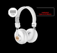 Positive Vibration 2 Wireless silver (EM-JH133-SV)