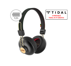 Positive Vibration 2 Wireless rasta (EM-JH133-RA)