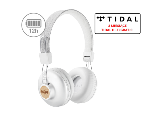 Positive Vibration 2 Wireless silver (EM-JH133-SV)